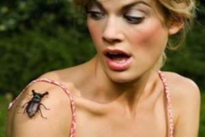 Инсектофобия