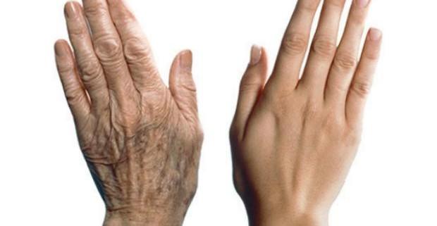 Ученые рассказали, как замедлить клеточное старение в организме
