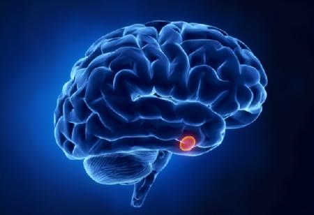Аденома гипофиза: причины, симптомы, лечение