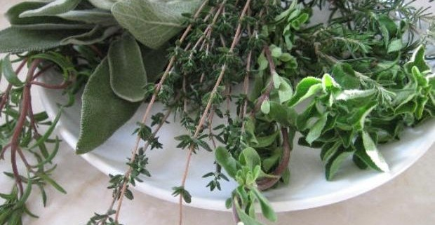 Лечение травами псориаза пятнистого