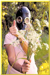 Аллергия – лето без проблем