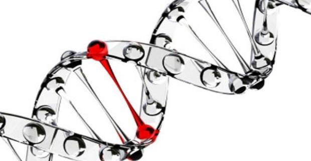 Ученые могут воссоздать лицо по ДНК