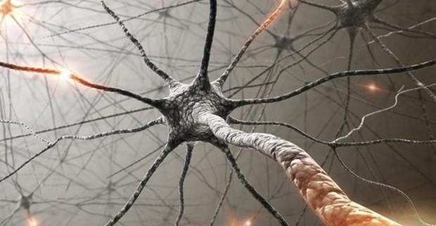 Заболевания нервной системы: причины, симптоматика