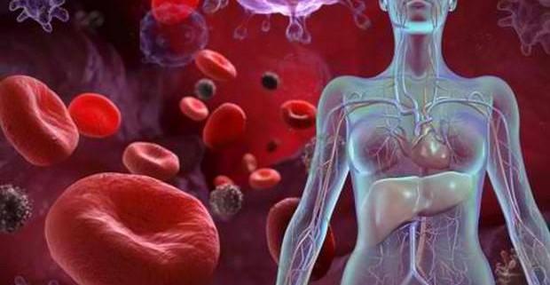 Что такое анемия и как бороться с малокровием