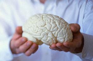Ученые разрабатывают симулятор человеческого мозга