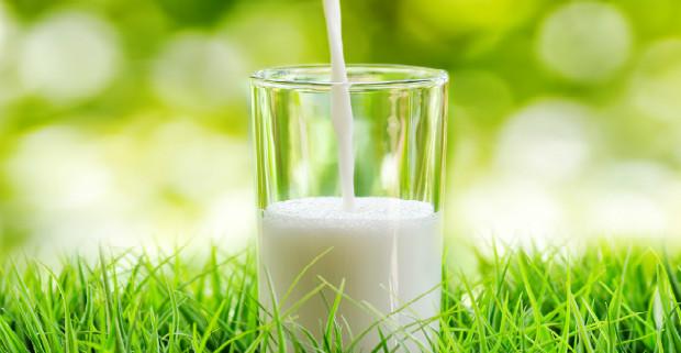Мамино молоко служит профилактикой бронхиальной астмы