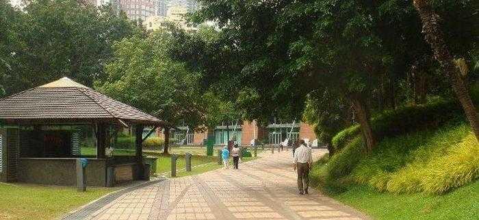 Ученые выяснили, что у жителей парковой зоны вероятность рака груди снижается