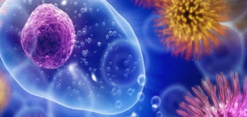 Как долго живет вирус гепатита С?