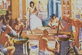Первого операции на деревного эгипета