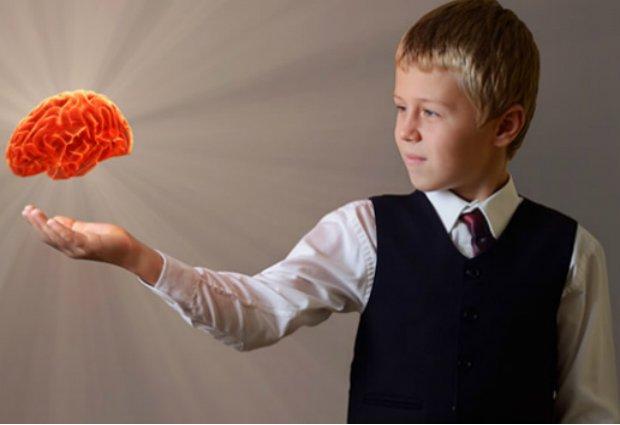 child's brain