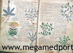 Средневековая исламская медицина