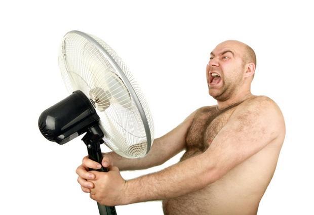 Как пережить жару: вода, еда и другие правила