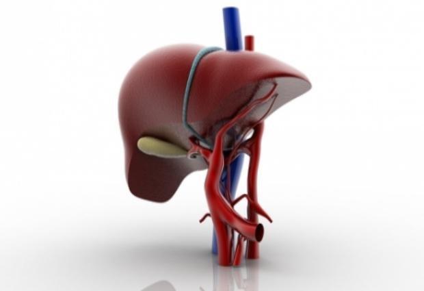 Ученые заявили, что через 22 года гепатит C исчезнет