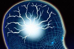 Структуры мозга адаптируется к изменениям окружающей среды